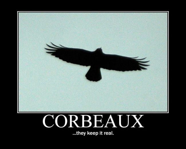 corbeaux keep it real