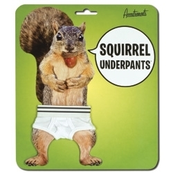 gI_squirrelunderpants.JPG